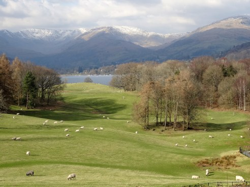 K Shoes Lake District ... : reading the view (A walk in the Lake District)   A Valley Journal
