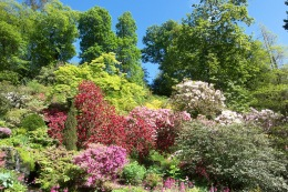 Spring in Bodnant Gardens, North Wales