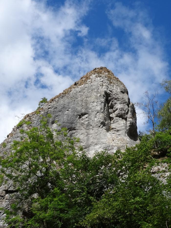 Limestone Rocks (Dovedale)